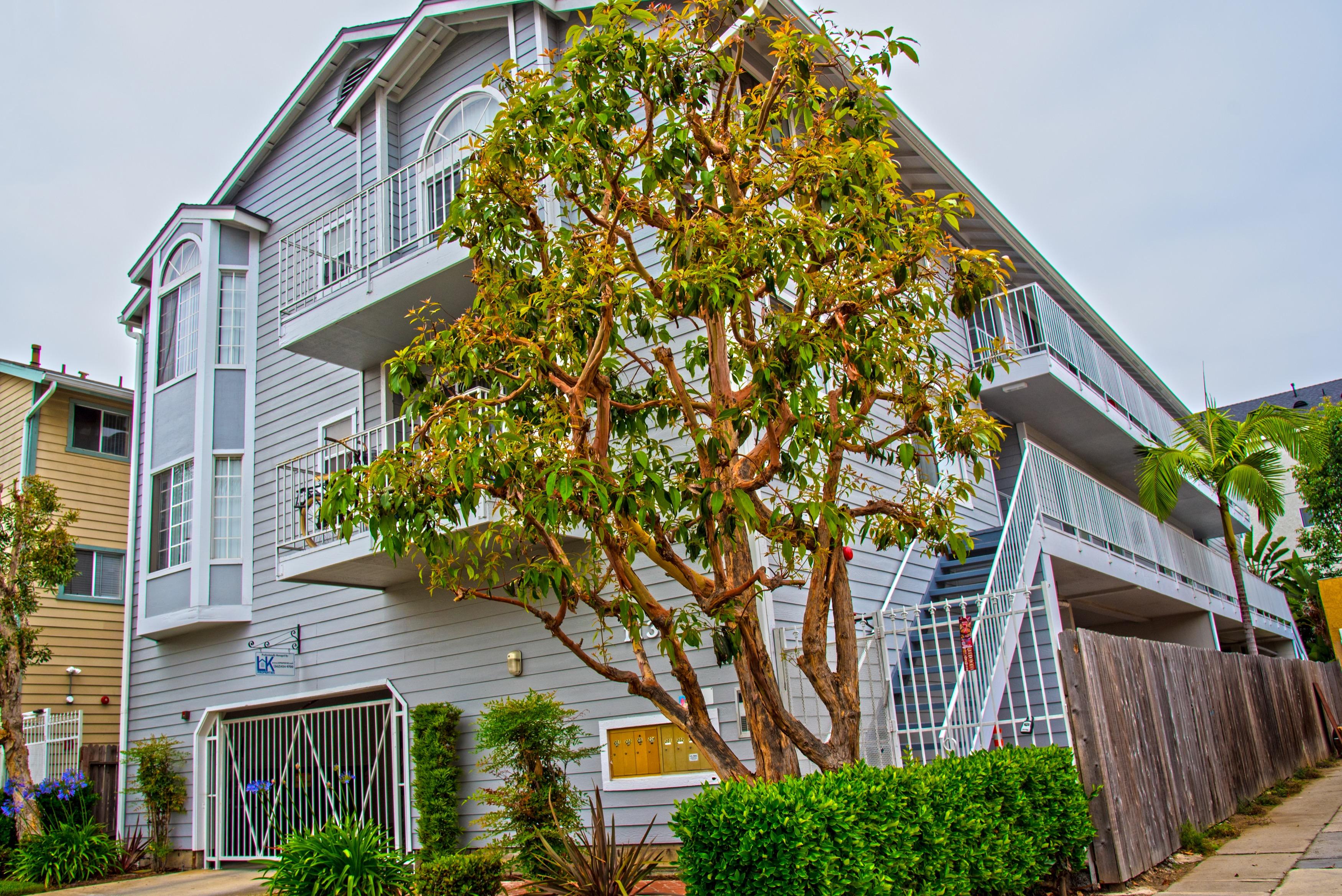 1133 Mira Mar Ave Long Beach, CA 90804 (Apt 301)